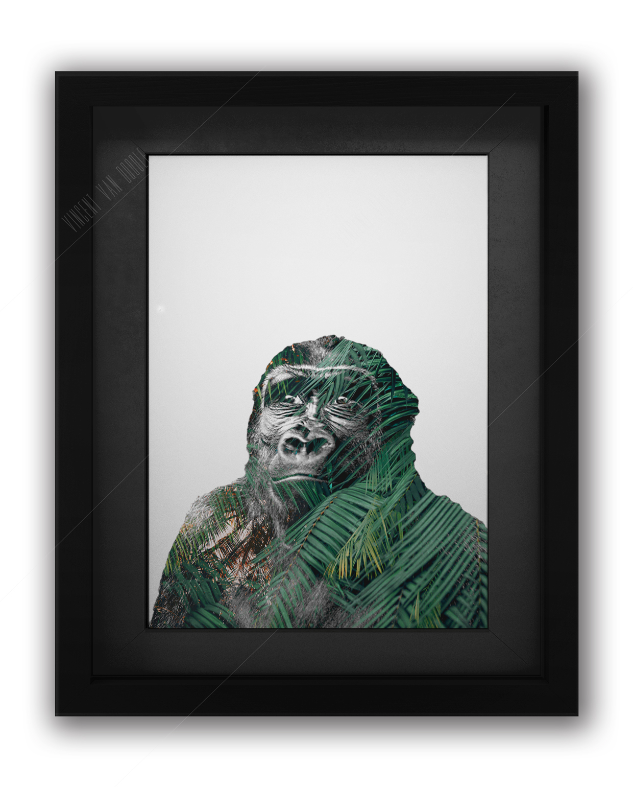 Gorilla Framed Black