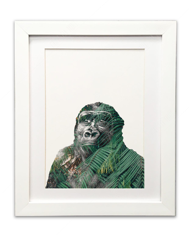 Gorilla-Framed-White