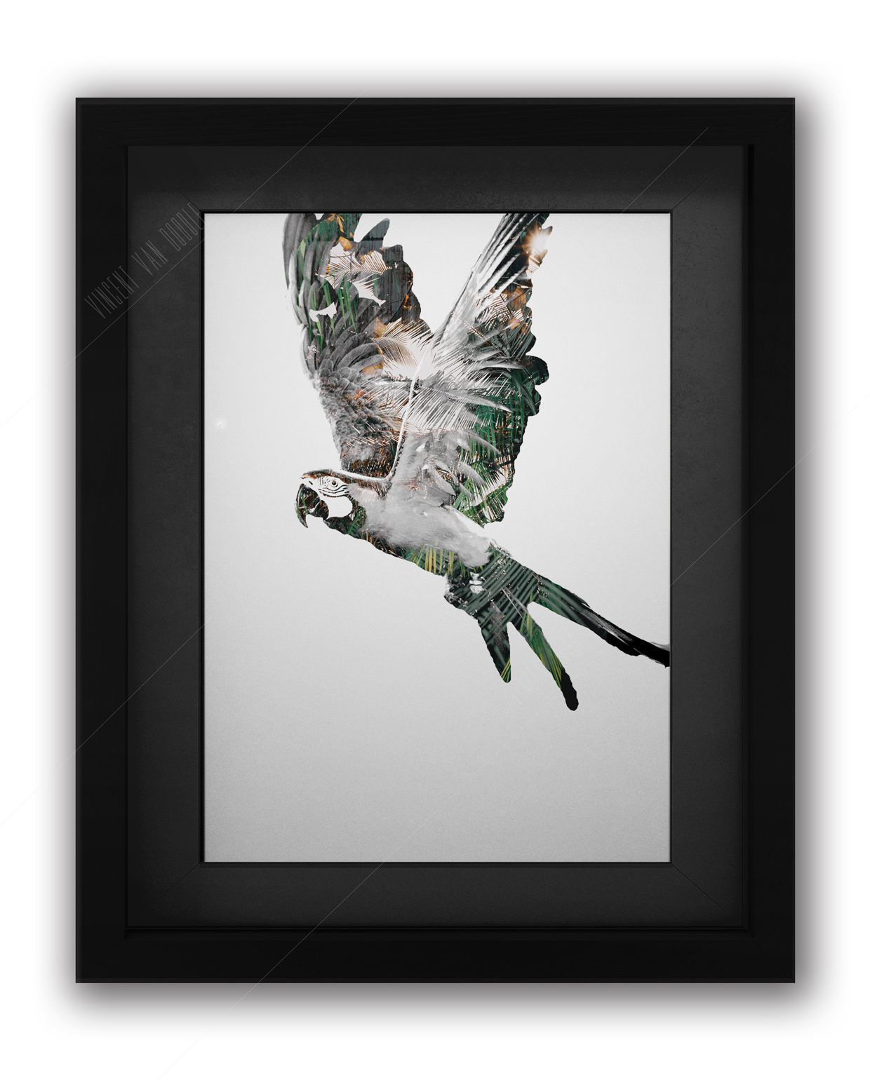 Parrot-Green-and-Gold-Black-Frame