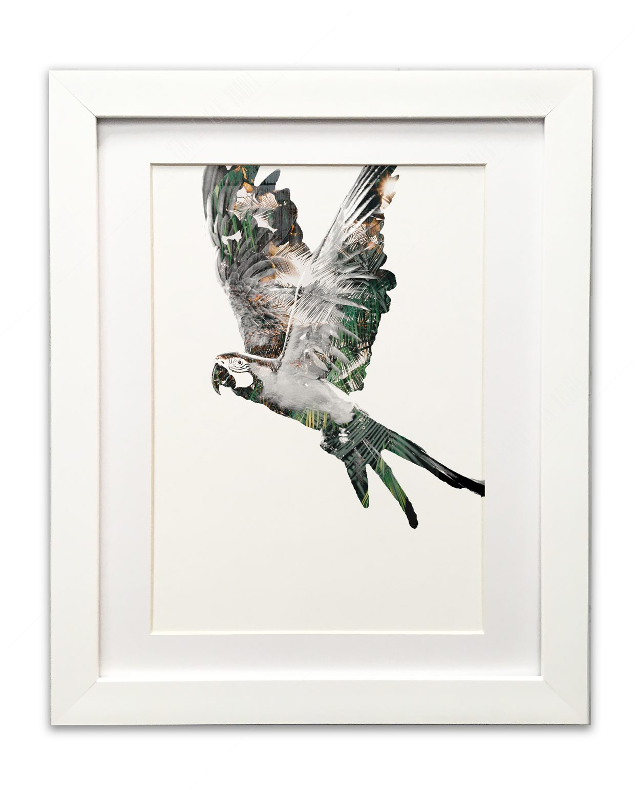 Parrot-Green-and-Gold-White-Frame