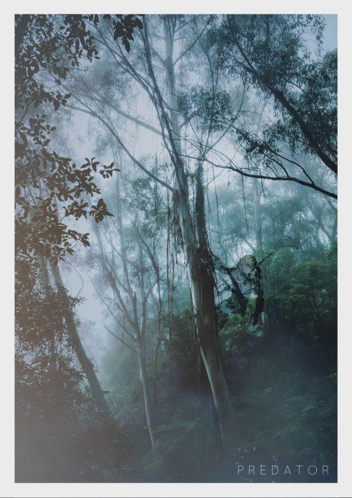 predator-landscape-web image